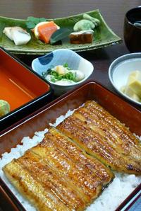 コース料理【なごみ】7,100円(税込